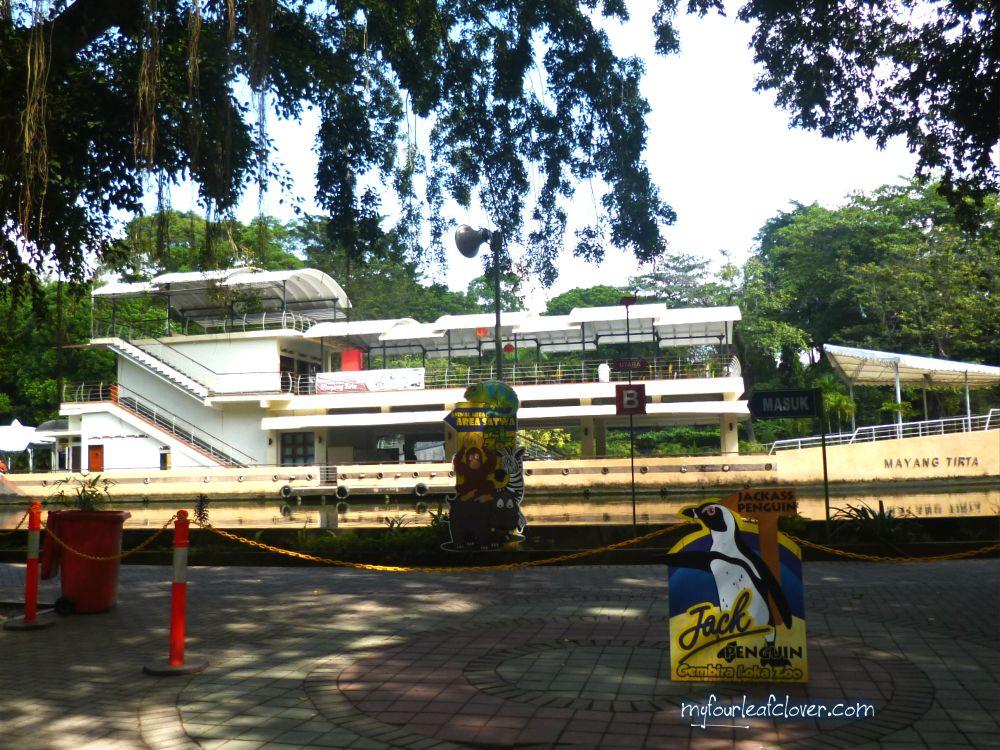 mayang-tirta-gl-zoo