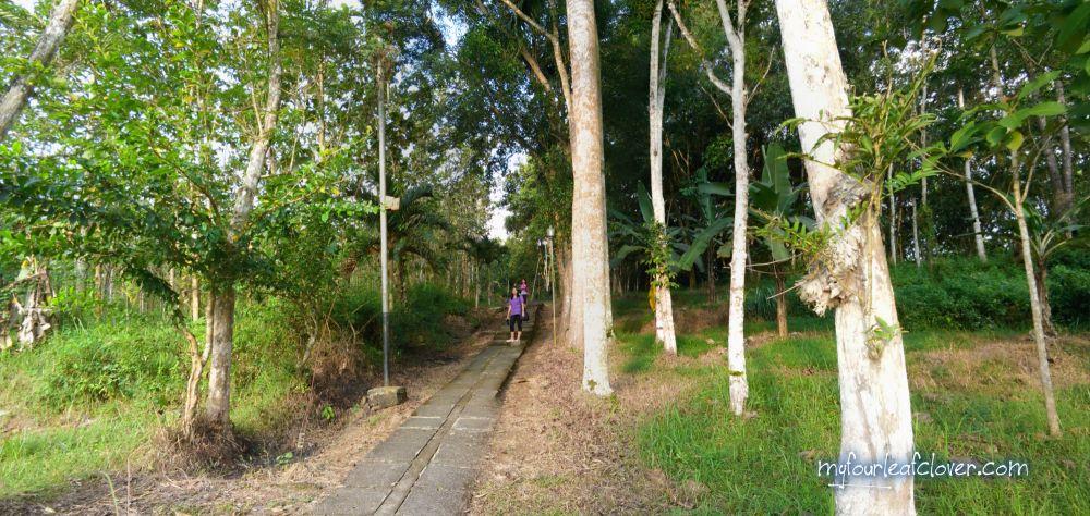 Jalan menuju Goa Maria Kaliori